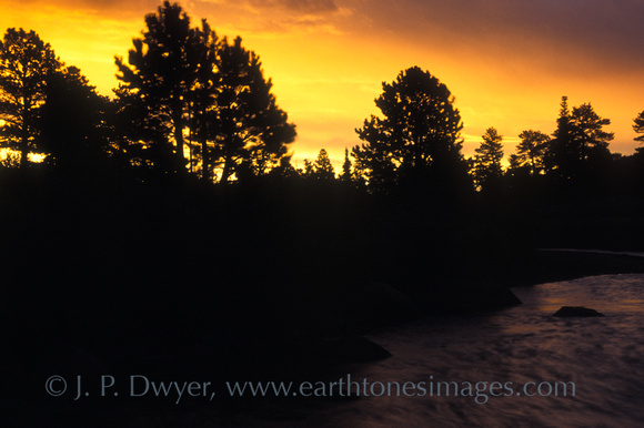 Shot during the fires in Yellowstone NP whose smoke created stunning sunrises/sunsets in Colorado too