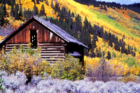 Cabin in Iowa Gulch near Leadville