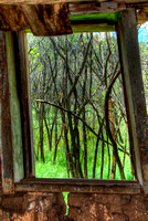 Taken from the inside of an abondoned 19th-century adobe home in Ledoux, NM. Notice the reflection of the green grass in the window frame.