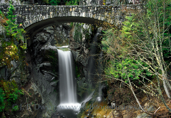Bridge and Christine Falls in Mt. Ranier National Park, WA