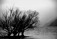 Early morning fog on Lake Wanaka, NZ. May 2004